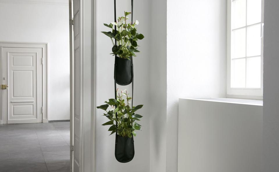 shopping des cache pots suspendre d co id es. Black Bedroom Furniture Sets. Home Design Ideas