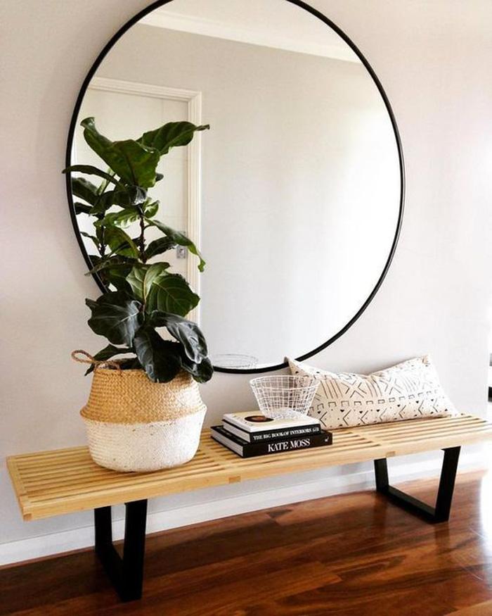 plantes-11