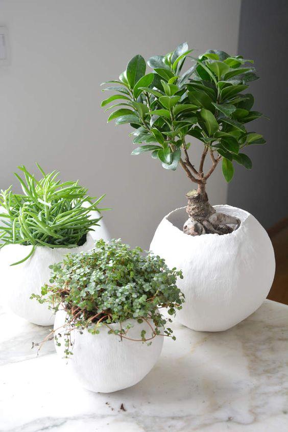 des cache pots personnalis s pour petites plantes d. Black Bedroom Furniture Sets. Home Design Ideas