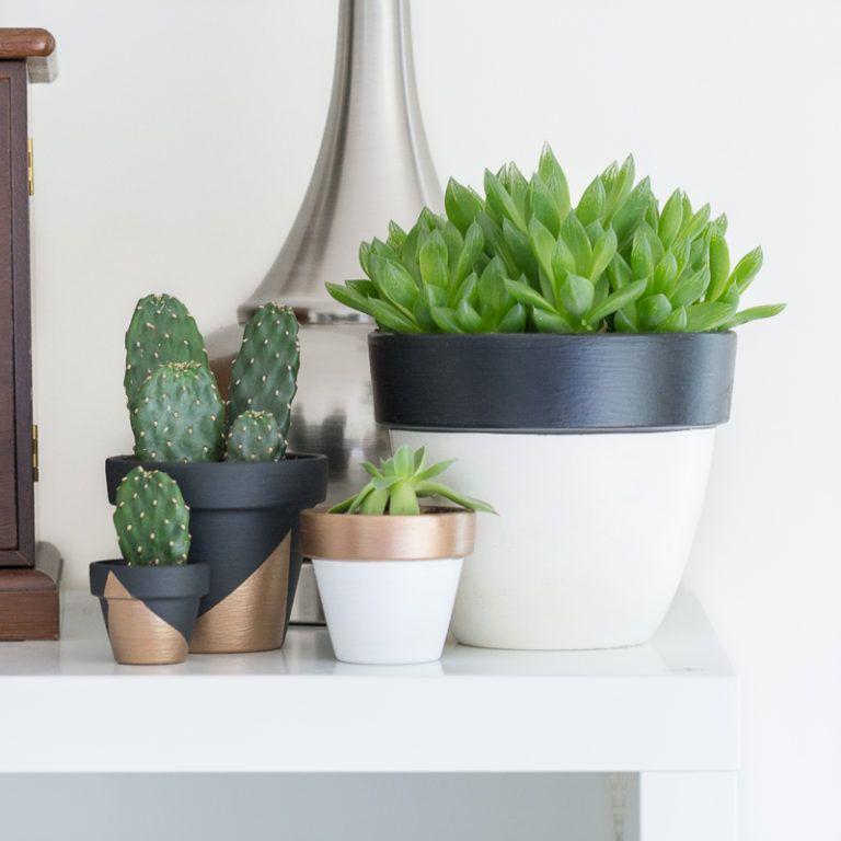 des cache pots personnalis s pour petites plantes d 39 int rieur d co id es. Black Bedroom Furniture Sets. Home Design Ideas