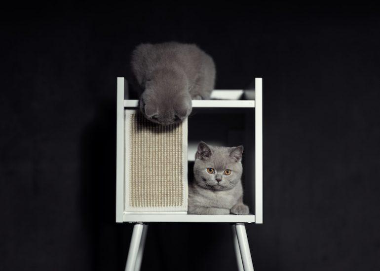 IKEA Zaventem - Jack & Theo