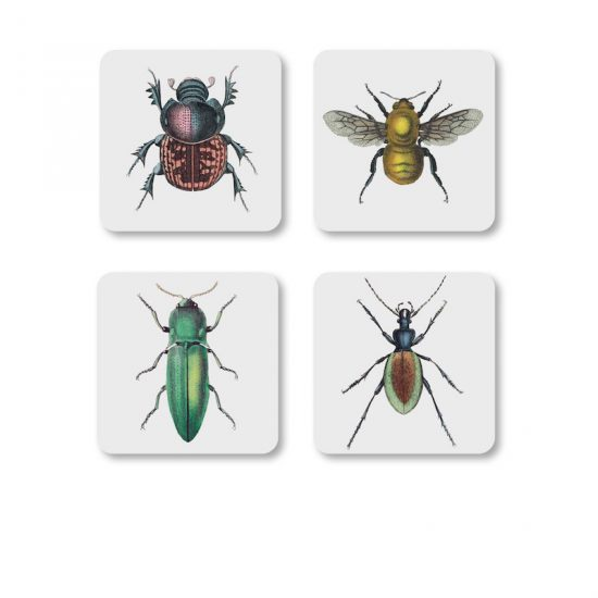 Set de 4 dessous de verre insectes