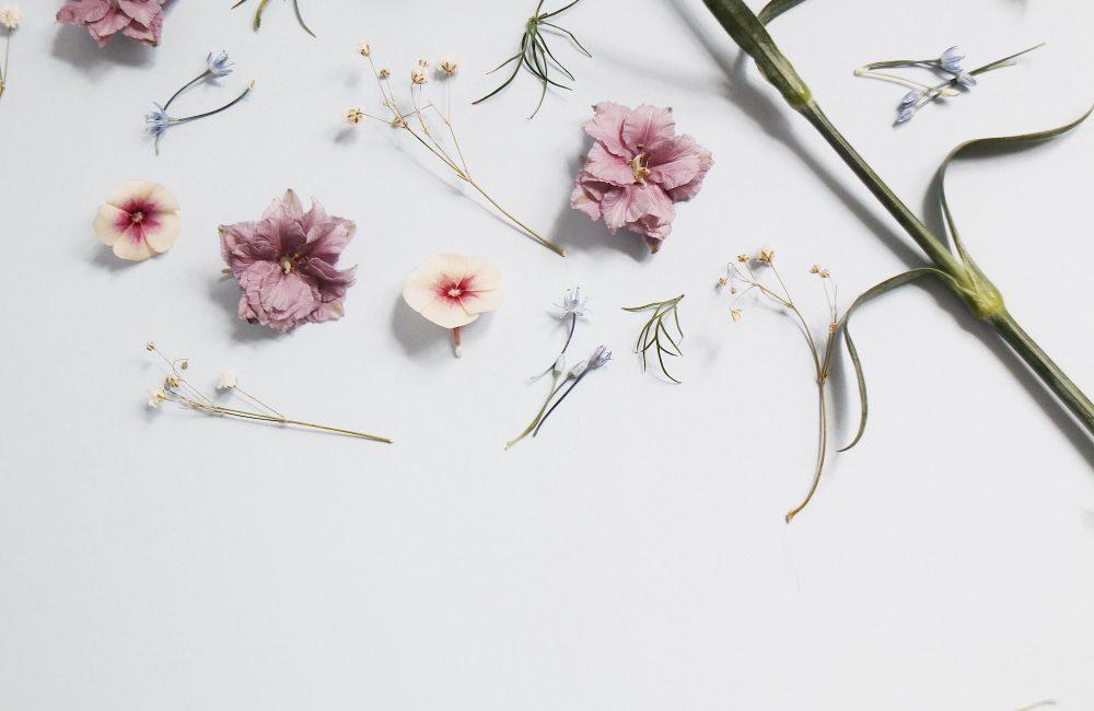 Comment adopter la tendance fleurs séchées ?