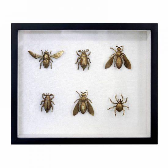 Cadre insectes dorés