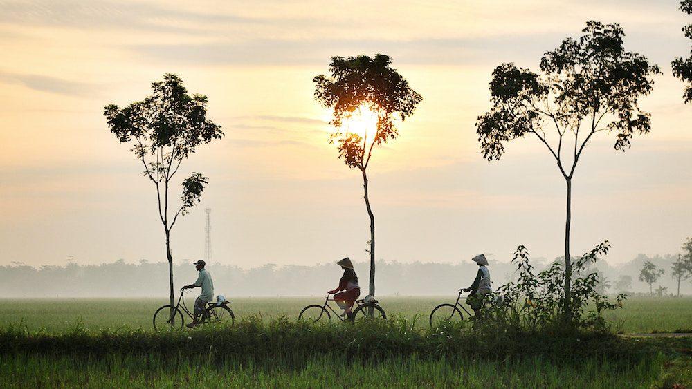 Destination Bali : une déco aux accents exotiques et distingués