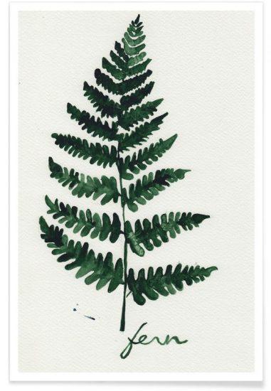 Affiche 'Fern', design Nathalie Köslin (à partir de 13 x 18 cm), Juniqe, à partir de 6,99€