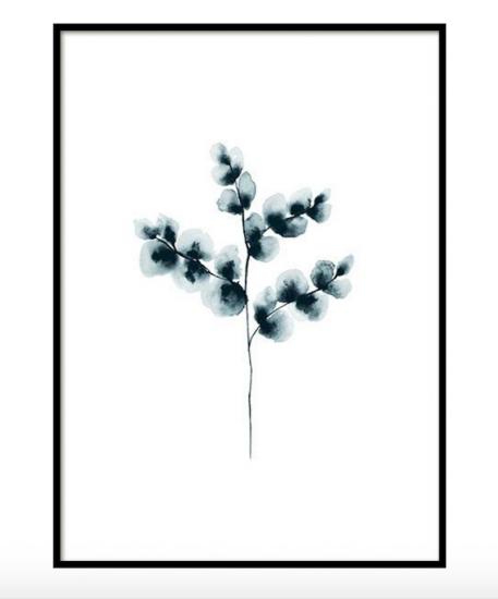 Affiche 'Cotton Plant blue' (à partir de 13 x 18 cm), Desenio, à partir de 3,95€