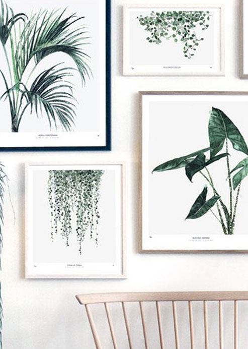 Affiches 'Botanical' en édition limitée, designMaarike Koster (à partir de 21 x 14,8 cm), My Deer, à partir de 9€