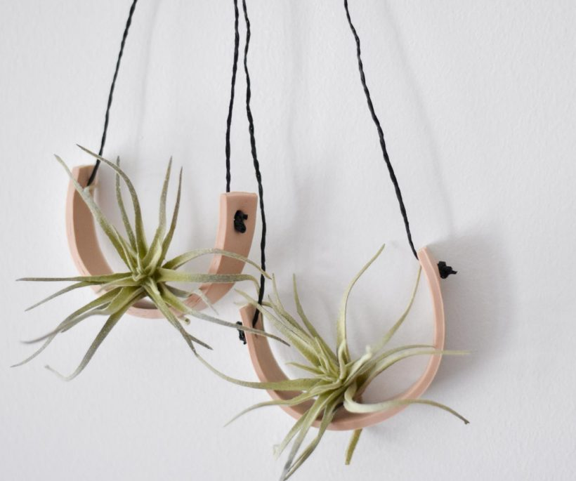 DIY: un décor mural pour air plants