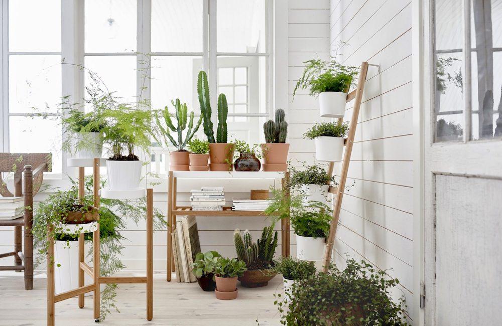 Où trouver une jardinière design pour votre intérieur ?