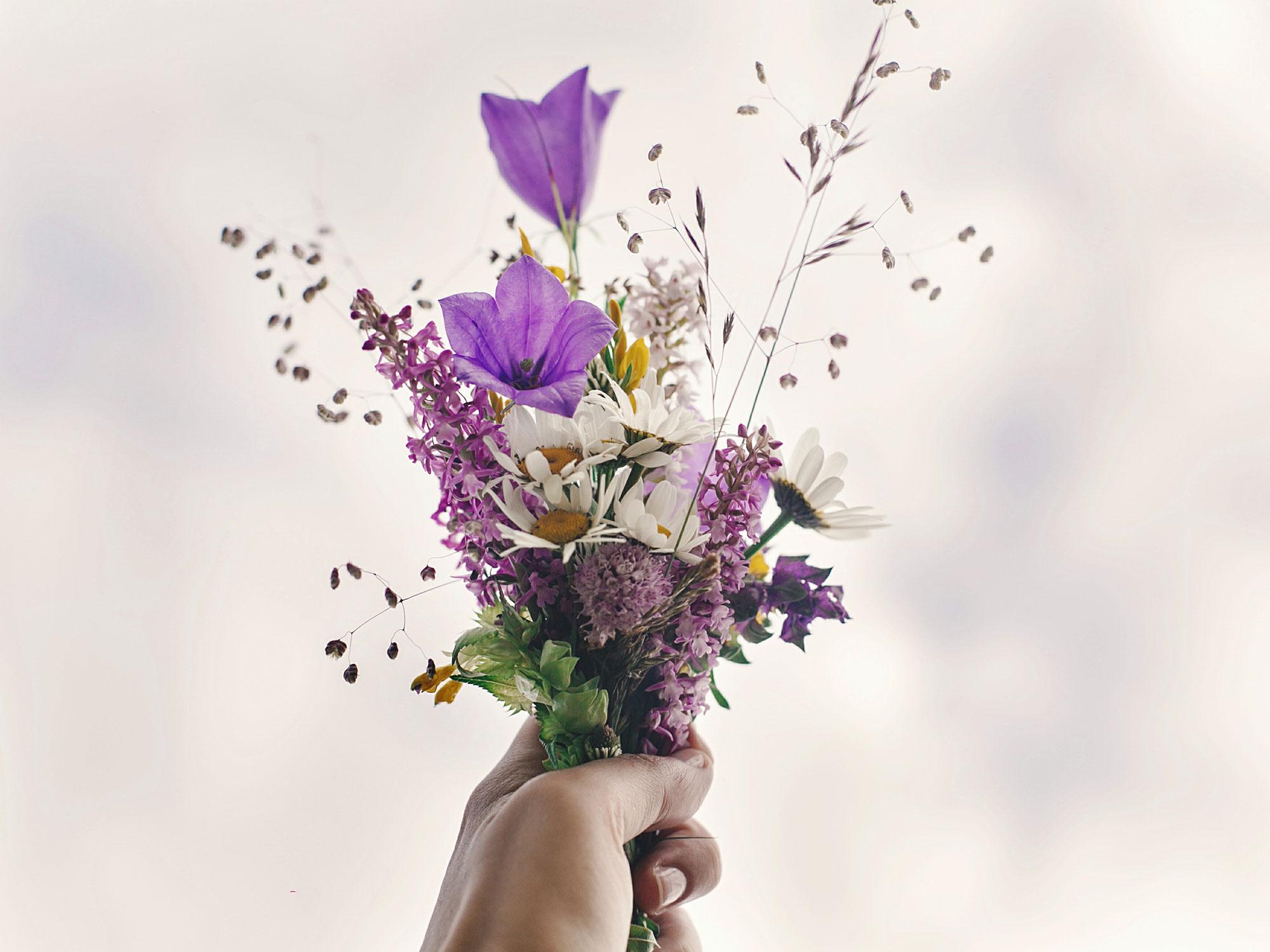 Comment Conserver Un Bouquet De Fleurs Plus Longtemps Deco Idees