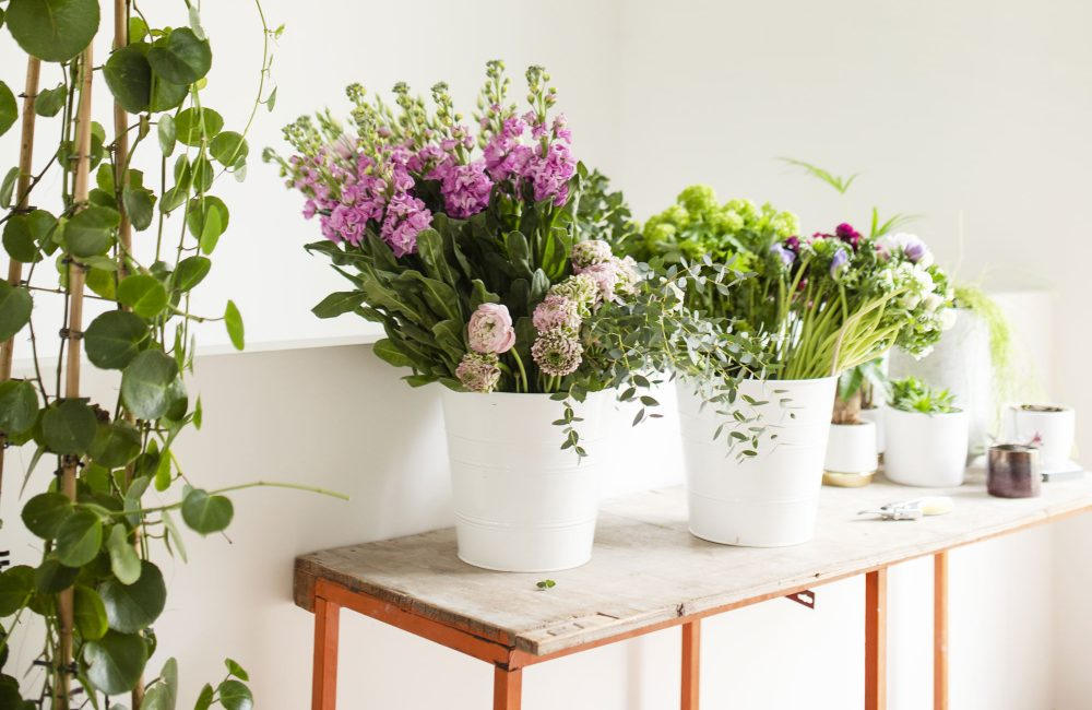 Dans l'univers de quatre fleuristes belges