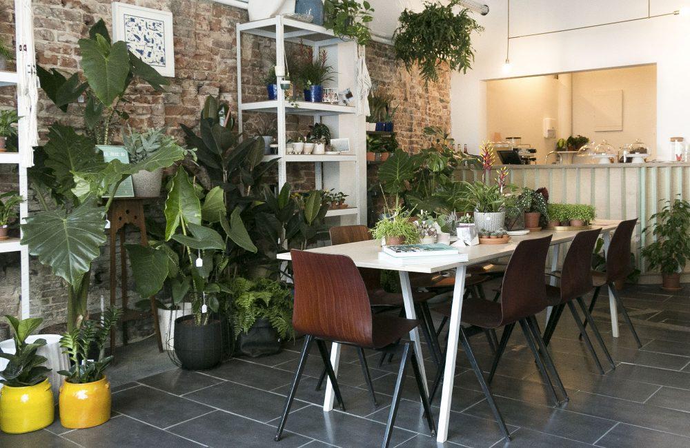 4 questions à la créatrice du concept store Gruun