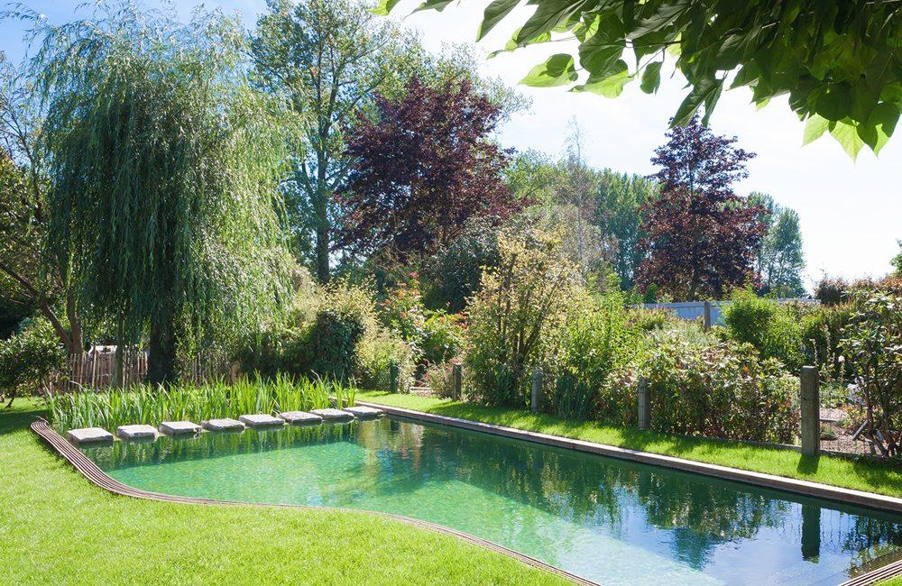Tout savoir sur les piscines naturelles - Déco Idées