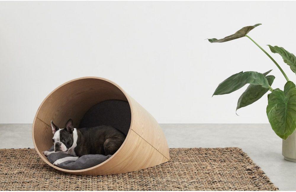 10 paniers design pour nos chiens et chats