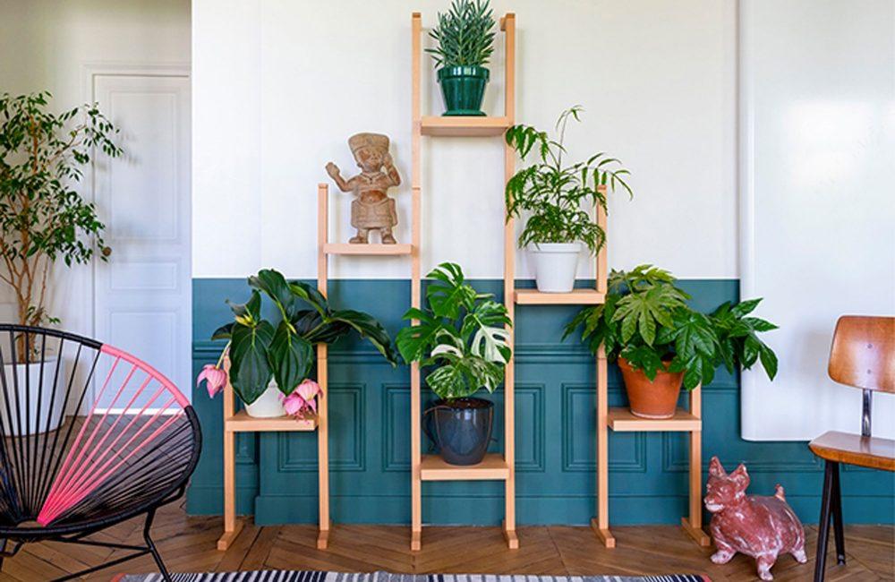 Nopal : le premier porte-plantes en bois modulable