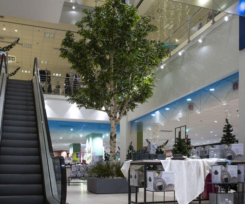 Le nouvel espace Maison de Galeria Inno rue Neuve, le plus grand de Belgique