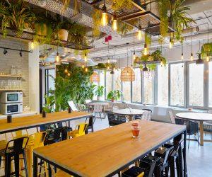Hive5 lance un second espace de coworking dans un cadre de jungle urbaine