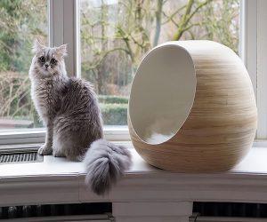 Dandy Cat: la marque design de mobiliers pour chats