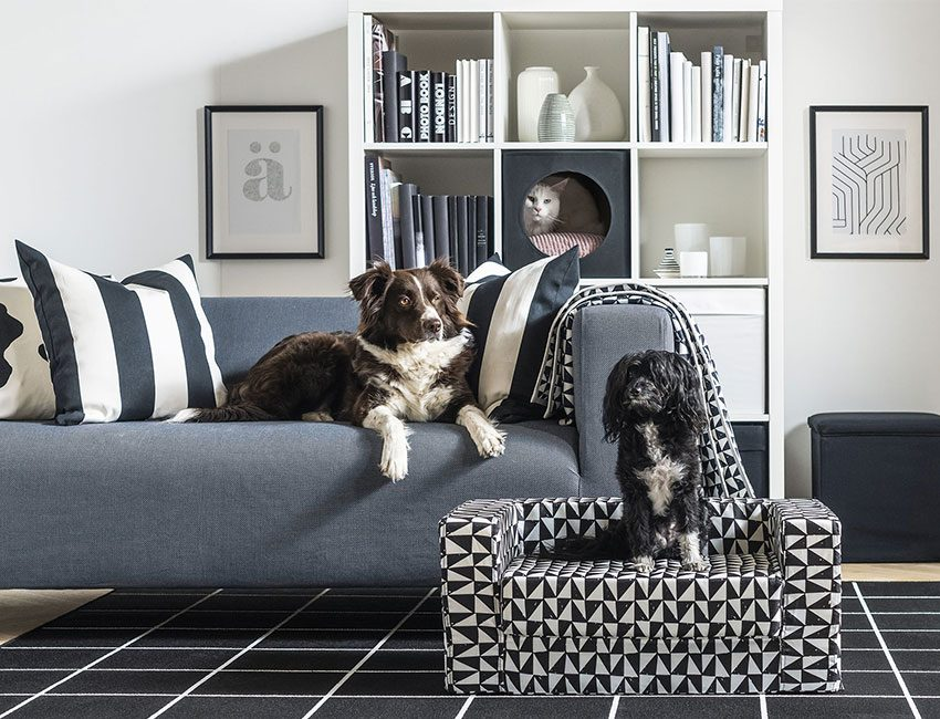 collection deco chien chat ikea
