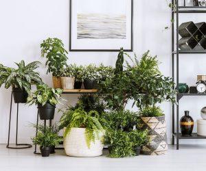 5 idées de jardinières à faire à la maison