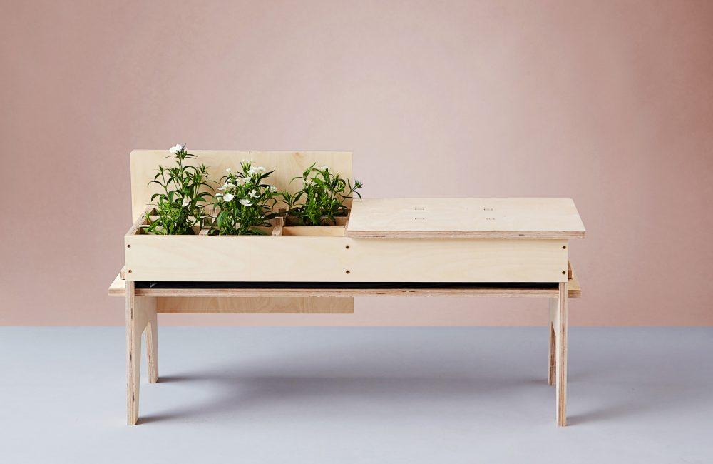 Plant Fever, quand les plantes se la jouent design