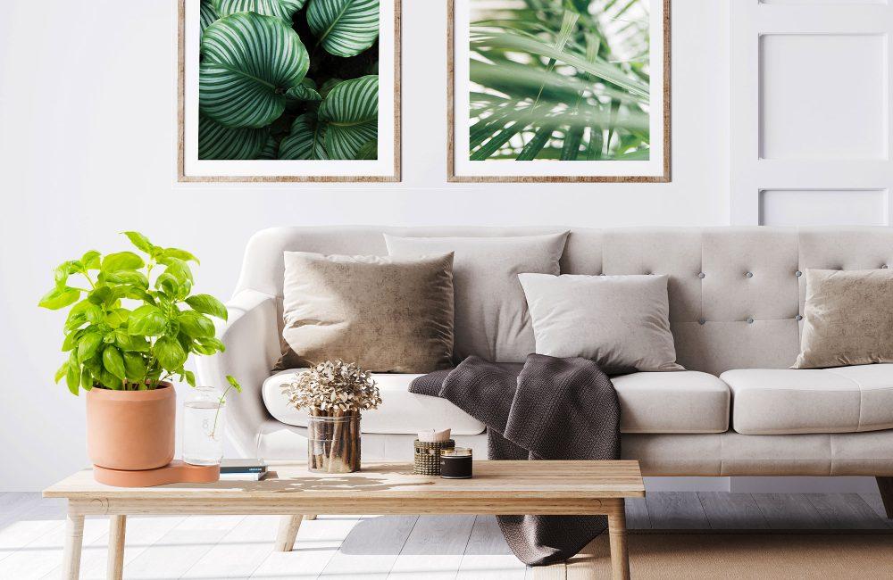 Faire pousser ses plantes à l'infini avec Greenfinity