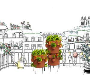 Ceercle, le nouveau potager de balcon pour citadin